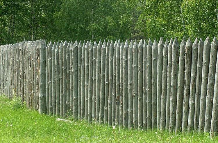 деревянный частокол
