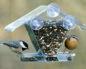 кормушки птичьи