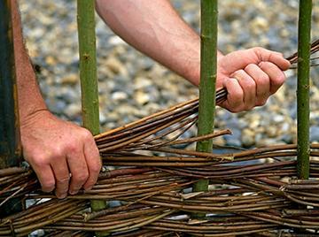 процесс изготовления плетня