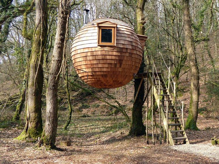 дом на дереве круглый